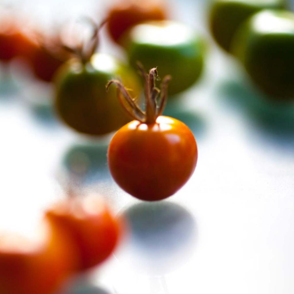 tomatenTomaten