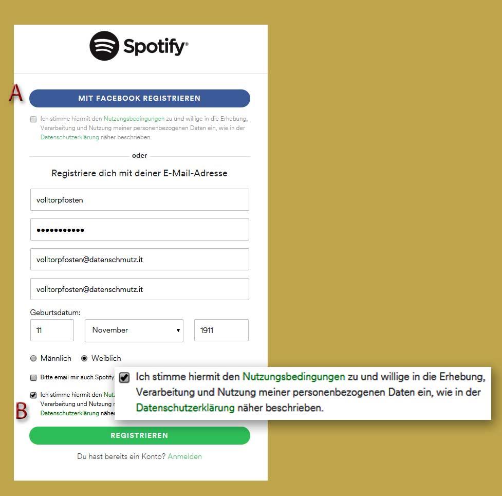 spotifyFakeAnmeldung